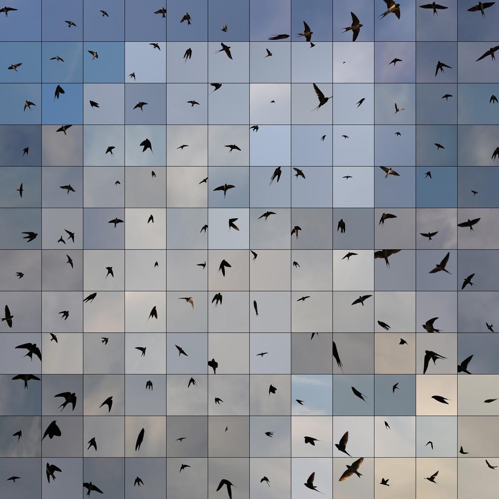 """""""Le Bleu du Ciel"""" - In motion © Édouard Taufenbach."""