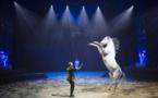 """""""Quintessence""""… entre terre et ciel, l'Art du Cirque !"""