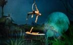 """""""Bosch Dreams""""… Délice savoureux théâtral, poétique, musical et circassien"""