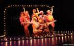 """2/11/2011 au 22/01/2012, Vingtième Théâtre, Paris, """"La Sublime revanche"""""""
