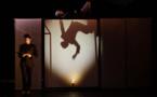 Festival Mondial des Théâtres de Marionnettes… Juste le rêve d'une ombre