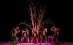 """""""Teh Dar""""… Voyage coloré, acrobatique et poétique dans le monde des K'ho"""
