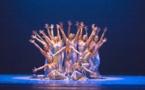 La fluide contemporanéité aux accents jazzy des chorégraphies d'Alvin Ailey